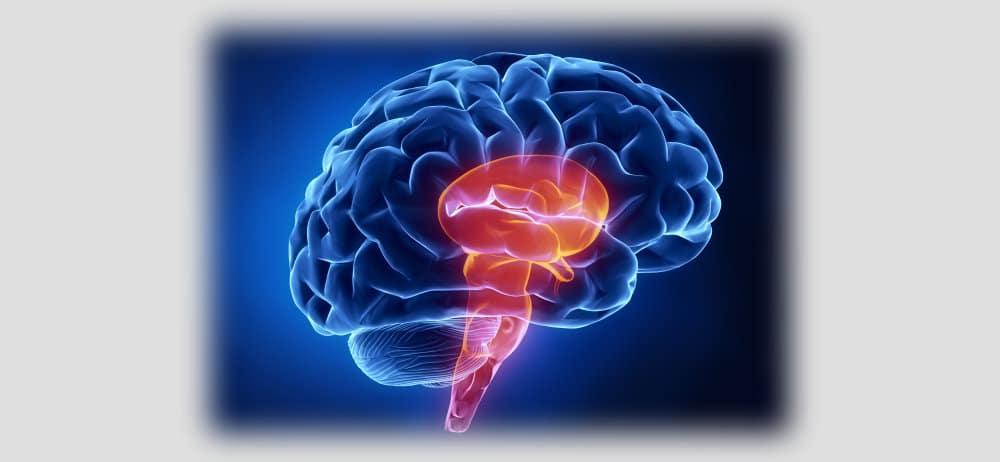 Migraine Disease Types: Migraine with Brainstem Aura